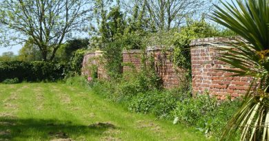 Crinkle-crankle wall at Babergh Place Farmhouse