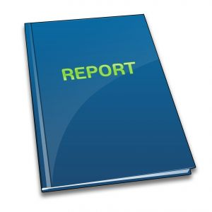 Business Report Document
